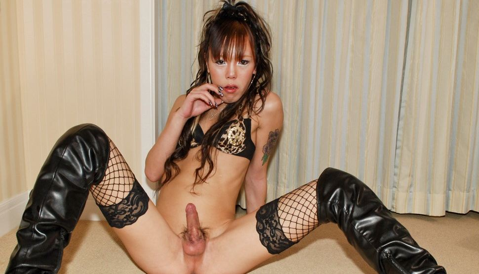 Ladyboy Pics - Ladyboy Pictures