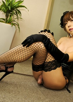 japanese ladyboy 2 250x350 Japanese Ladyboy in black Fishnets